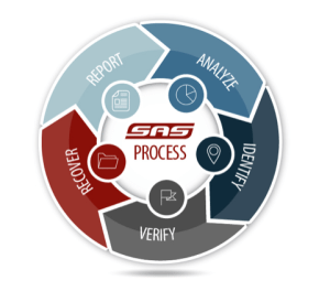 SAS-Process-Wheel (1)